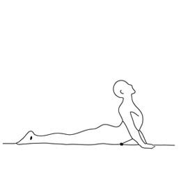 posture du cobra